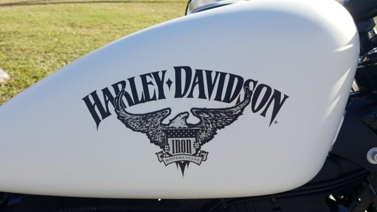2018 harley davidson sportster iron 883 for sale near tampa florida 33619 motorcycles on. Black Bedroom Furniture Sets. Home Design Ideas