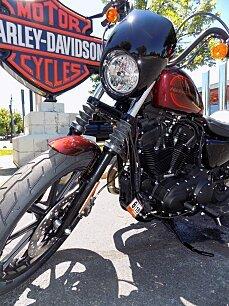 2018 Harley-Davidson Sportster for sale 200597740