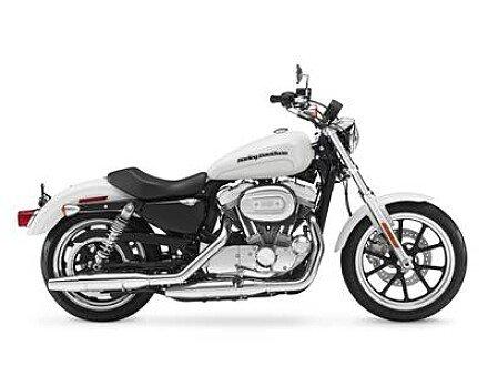 2018 Harley-Davidson Sportster SuperLow for sale 200653390