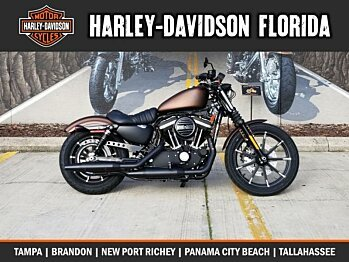 2019 Harley-Davidson Sportster Iron 883 for sale 200621838