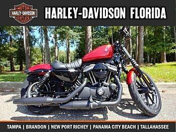 2019 Harley-Davidson Sportster Iron 883 for sale 200626538