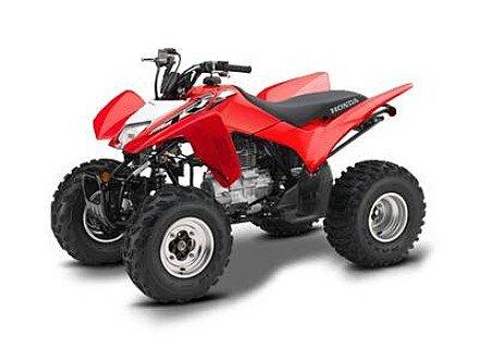 2019 Honda TRX250X for sale 200642369