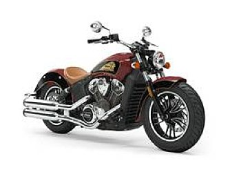 2019 Indian Scout for sale 200627565