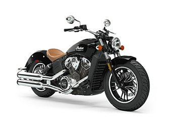 2019 Indian Scout for sale 200627568