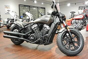 2019 Indian Scout for sale 200627799