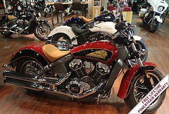 2019 Indian Scout for sale 200628173