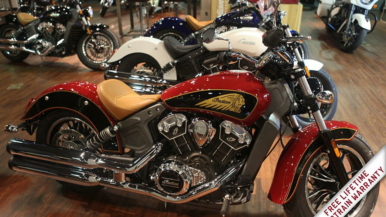 2019 Indian Scout for sale 200628490