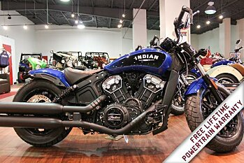 2019 Indian Scout for sale 200632989