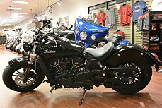 2019 Indian Scout for sale 200661837