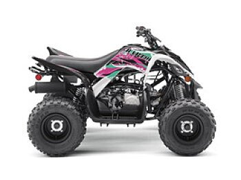 2019 Yamaha Raptor 90 for sale 200601934