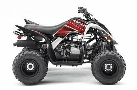 2019 Yamaha Raptor 90 for sale 200610573