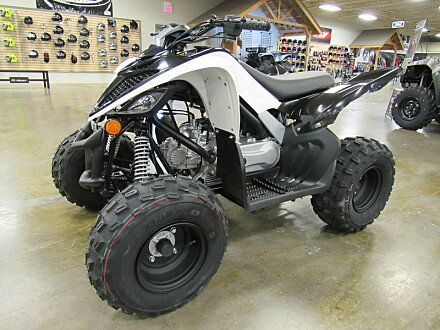 2019 Yamaha Raptor 90 for sale 200612830
